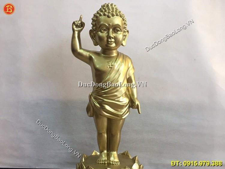 https://ducdongbaolong.vn/wp-content/uploads/2017/08/tuong-thich-ca-dan-sinh.jpg