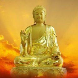 Mua Tượng Phật A Di Đà Ở Đâu? Đúc tượng Phật bằng đồng cung tiến