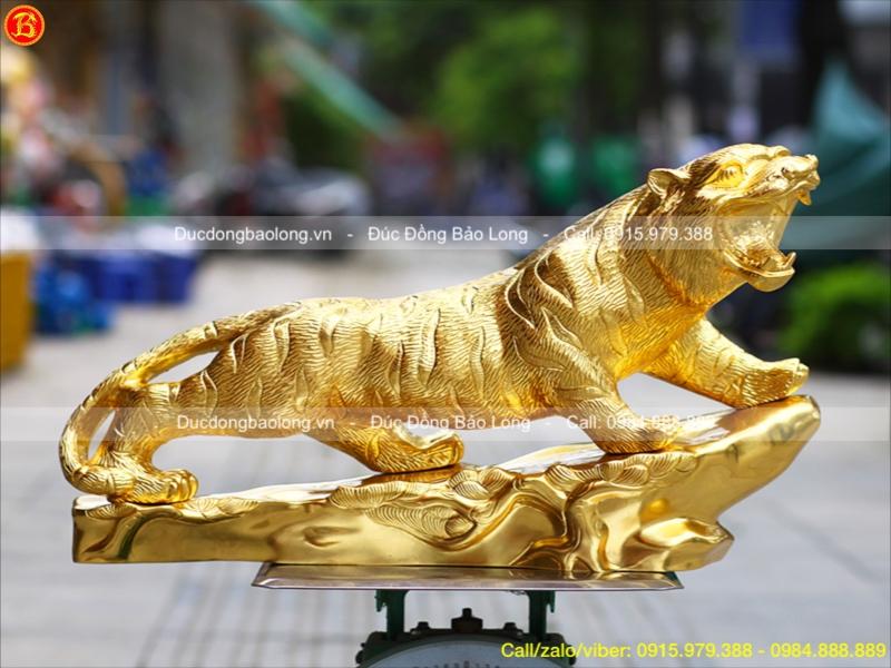 con hổ dát vàng